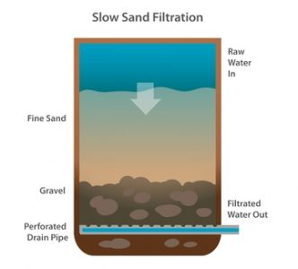 Slow Sand Filtration For Removal Of Algae And Diseases In